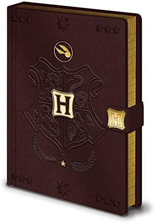 Harry Potter - Notizbuch - Quidditch